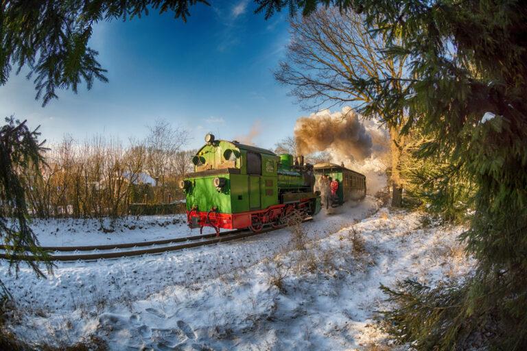 D71_3660_roland_winter